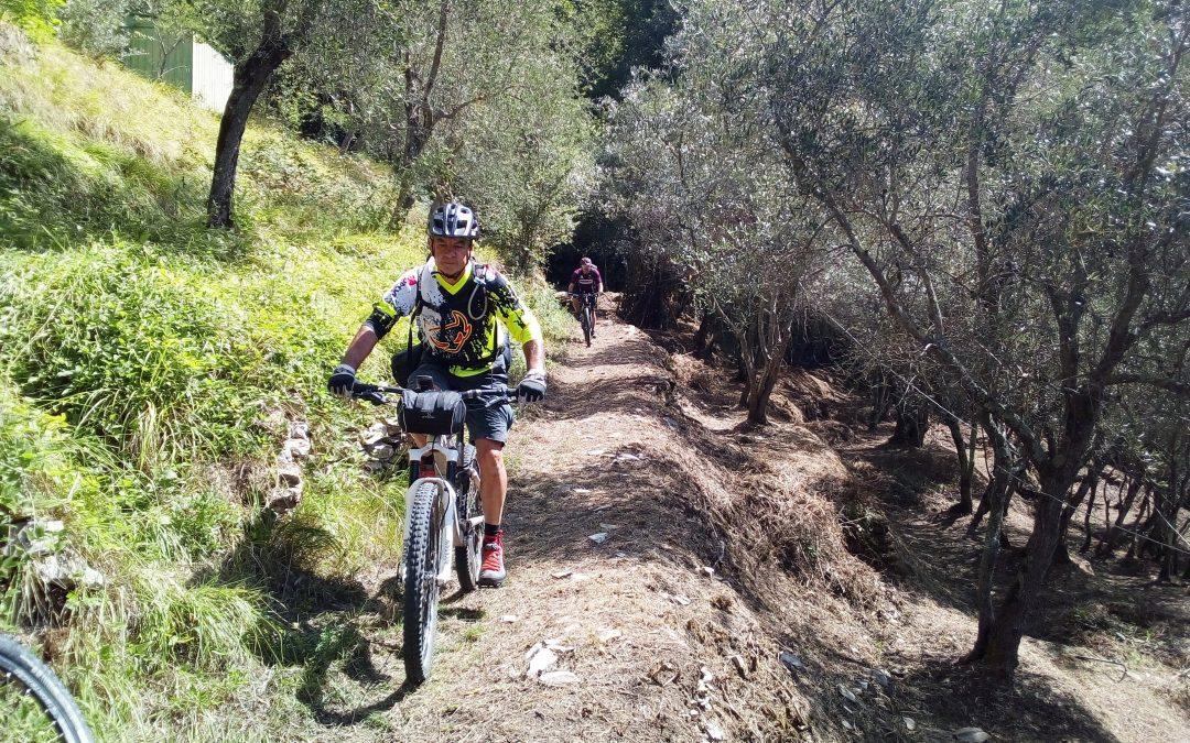 In Mountain Bike tra gli uliveti della Lunigiana